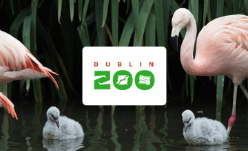 Grab Family Tickets from as Low as €50.50 at Dublin Zoo