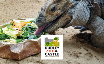 35% Off Tickets at Dudley Zoological Gardens