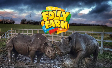 Annual Passes from £27 at Folly Farm Adventure Park & Zoo