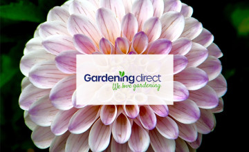 10% Off Next Order with Newsletter Subscription at Gardening Direct
