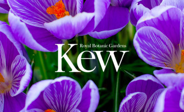 10% Off Tickets (Only £12.50) at Kew Royal Botanical Gardens