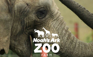 Up to 34% Off Tickets at Noah's Ark Zoo Farm