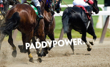 Money Back as a Free Bet on Greyhound Racing MBS at Paddy Power