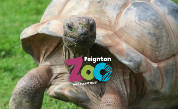 Free Entry for Kids Under 3 at Paignton Zoo