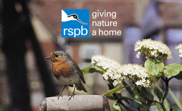 Gift Membership from £5 per Month at RSPB