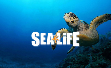 Up to 10% Off Online Pre Bookings at SEA LIFE Centres & Sanctuaries