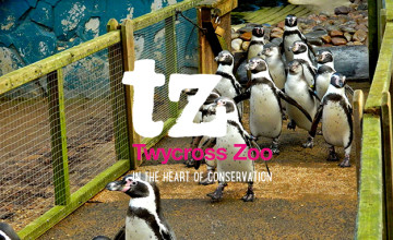 22% Off Tickets at Twycross Zoo