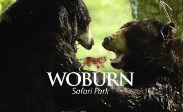 30% Off Tickets at Woburn Safari Park