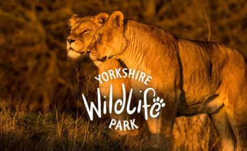 30% Off Tickets at Yorkshire Wildlife Park