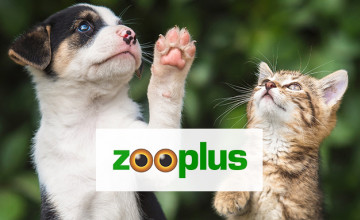 8% Off Orders Over £75 with Breeder Program Sign-ups at zooplus Pet Shop