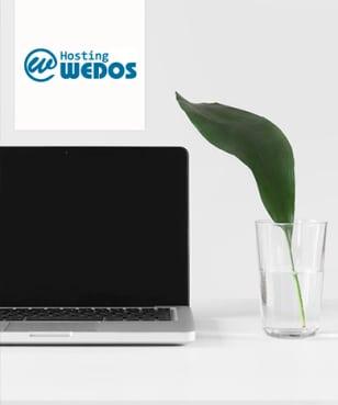Wedos - Sleva 60%