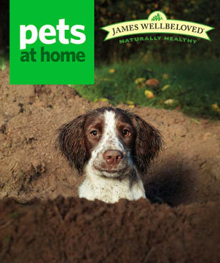 Pets at Home - Free Gift