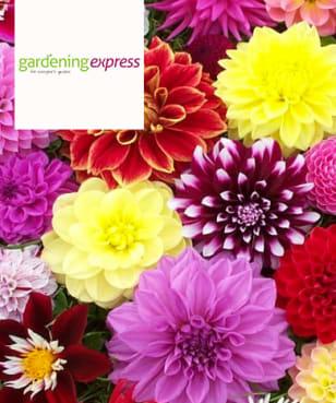 Gardening Express - Free £5 Gift Card