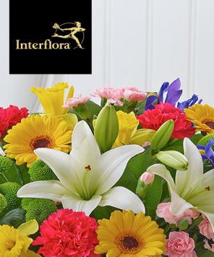 Interflora - Exclusive