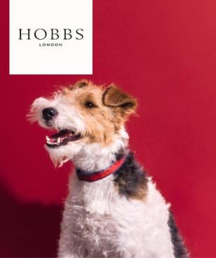 Hobbs - Black Friday ORANGE