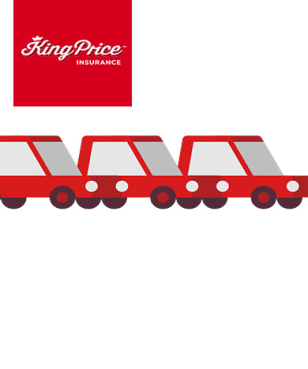 20% Off Car Insurance at King Price