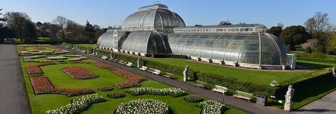 Kew Gardens Banner Image