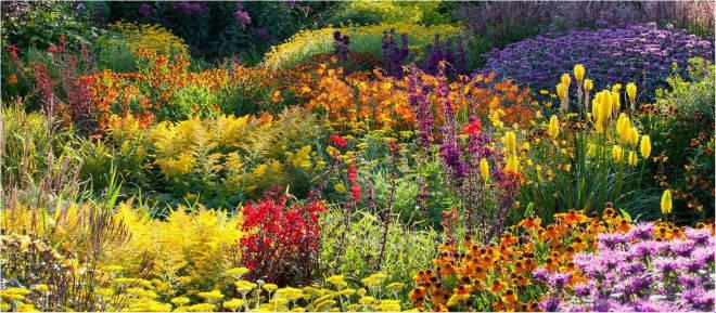 royal horticultural society gardens