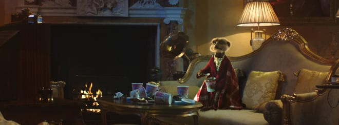 Compare the Meerkat movies
