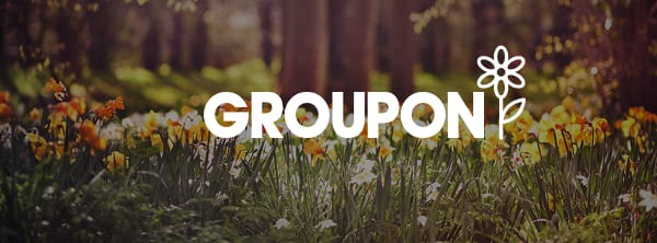 15% Off → Groupon Promo Codes for August 2019